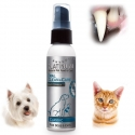 dentifrice pour chien platinum
