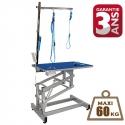 Table electrique 60kg