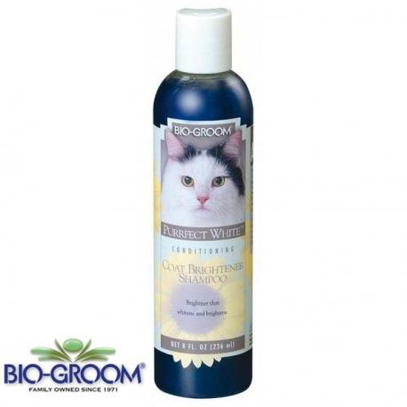 'Purrfect White' Shampoo