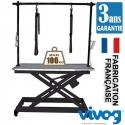 Table electrique Professionnel Hauteur 36 a 96 cm