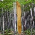 Peigne pour chien Bambou 31 dents Rotatives