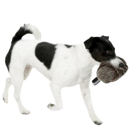 Boudin de dressage et de rappel pour chien