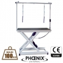 Table electrique toilettage maxi 100kg Jupiter