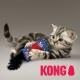 KONG Kickerooun jouet chat