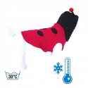 Pull chien Coccinelle