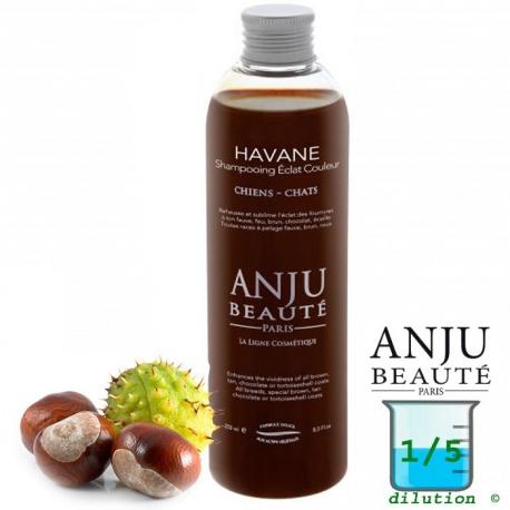 Shampoing pour chien Anju Havane