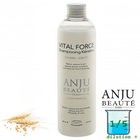 Shampoing pour chien Anju Vital Force