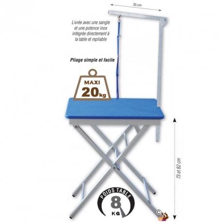Table pliante portable en aluminium