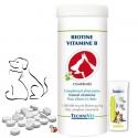 Biotine pour chien