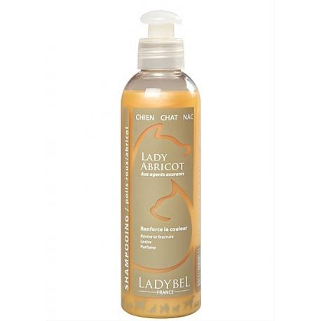 LadyBel Shampooing Abricot