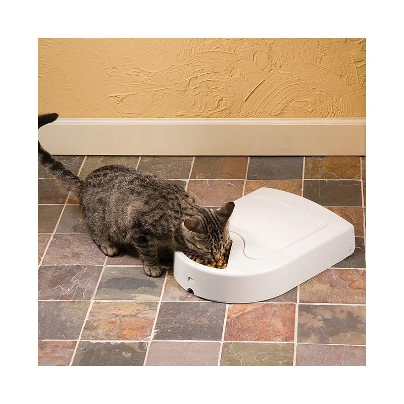 distributeur croquette pour chat nos amis les chats. Black Bedroom Furniture Sets. Home Design Ideas