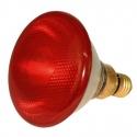 Lampe chauffante chiot PAR38 IR 230V 175W