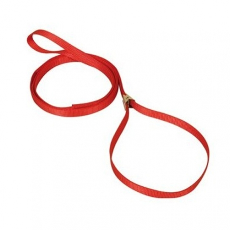 LAISSE EXPOSITION A PINCE 6 mm ROUGE