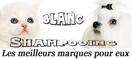 Shampoing blanc pour chien